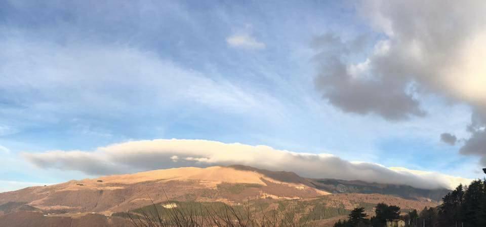 """Gennaio 2017 - Nella Foto di Elisa Castelletti, """"El Cavalon"""", come i vecchi della Val d'Adige erano soliti chiamare tale nube, nella mattinata del 30 gennaio. La parte più avanzata della perturbazione che dopo molti giorni di alta pressione sta avvicinandosi alle Alpi trasporta aria umida che condensa sul Monte Baldo. Al di fuori della regione del sollevamento, l'aria è comunque secca, e i bordi della nube appaiono quindi molto netti. Un ringraziamento a Meteo Caprino Veronese."""